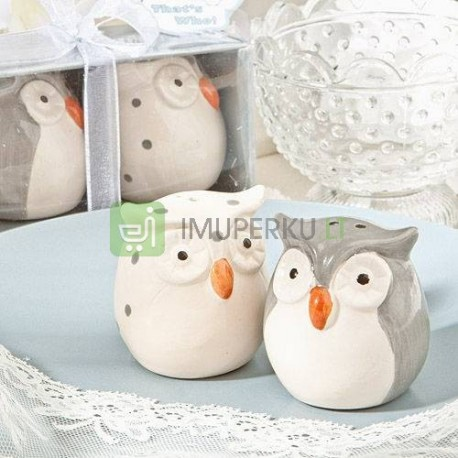 Salt & Pepper Shakers OWLS