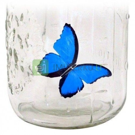Butterfly in a jar - blue morpho